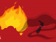Australian Bushfires | WhyNot?