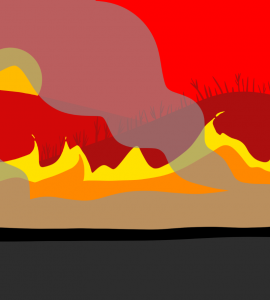 Bushfires My Country is burning and I feel Hopeless   WhyNot?